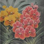 1-Venda Orchids, Undated RM 4,950.00-SOLD | Watercolour on paper | 35 x 25.5 cm