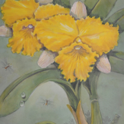 3-Yellow Beauty, Undated RM 4,950.00-SOLD | Watercolour on paper | 40 x 26 cm