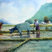 46-Mokhtar Ishak. Sowing (2011) 30.5cm x 44cm Watercolour on Paper