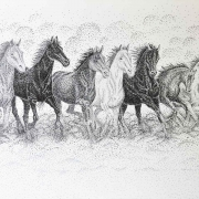 21-SOLD rm 1,792 Runaway Horses Series 2, 2012 AVAILABLE | Acrylic and black ink on acid free canvas | 60 x 90 cm copy